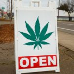 Pot Legalization and Traffic Fatalities