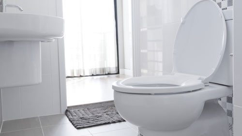 Bacteria Found Feces Toilets