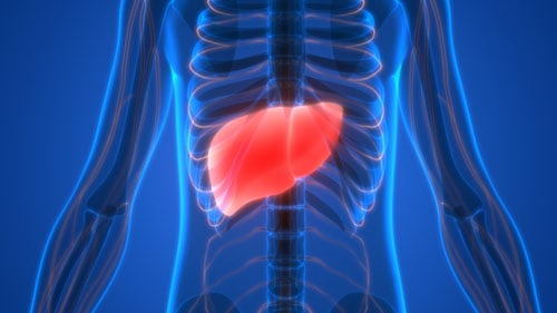 Liver Sick Cancer