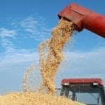Accidents with Grain Augers