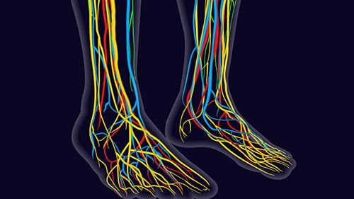 Nerve Damage Numbness Legs