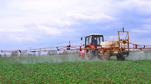 Farmer Spraying Crop