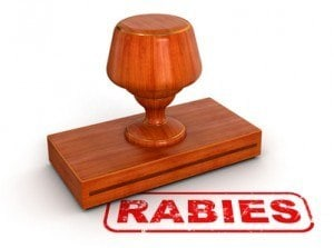 Dogs and Rabies
