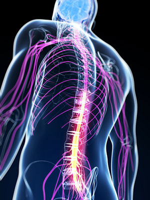 Anterior Spinal Cord Injury